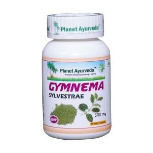 Prehransko dopolnilo GYMNEMA SYLVESTRE (GURMAR) KAPSULE