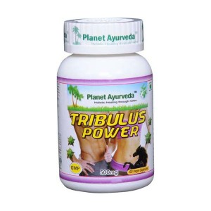 Prehransko dopolnilo TRIBULUS TERRESTRIS (NAVADNA ZOBAČICA) KAPSULE